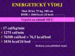 energetick v dej31