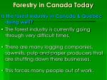 forestry in canada today