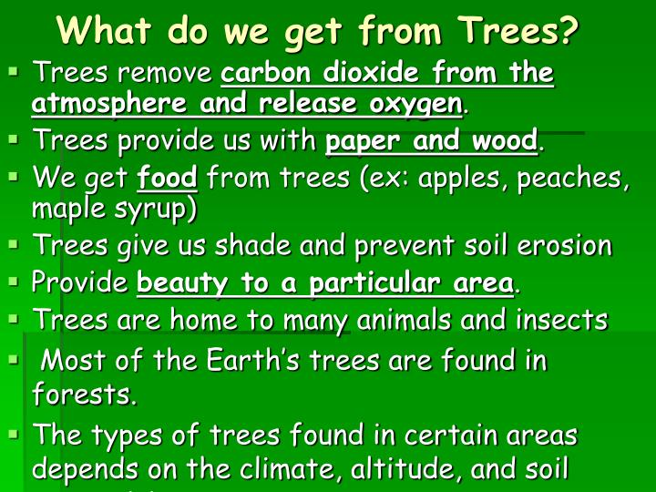 Ppt forestry and forest regions leaves are used by trees for What do we use trees for