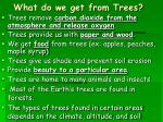 what do we get from trees