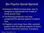 bio psycho social spiritual