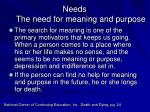 needs the need for meaning and purpose