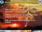 summary forecast challenges