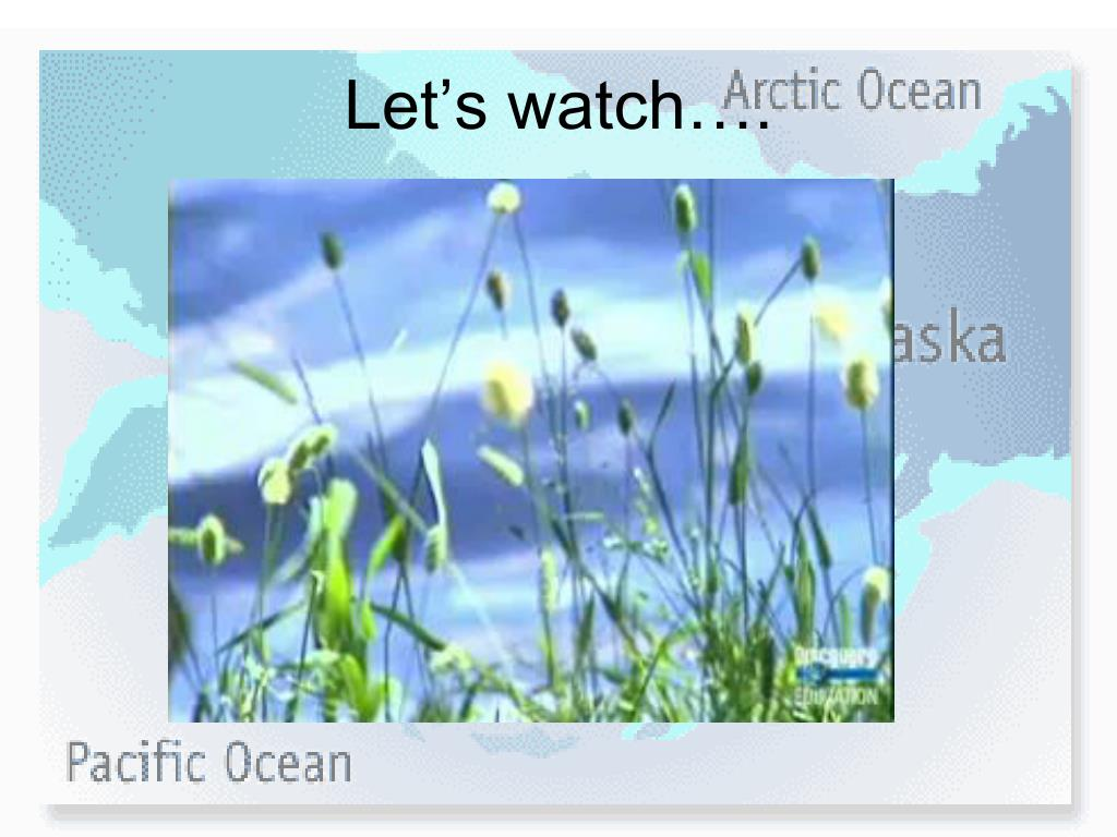 Let's watch….