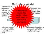 multistore model