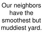 our neighbors have the smoothest but muddiest yard