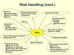 risk handling cont
