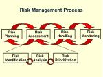 risk management process