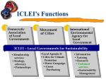iclei s functions