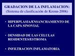gradacion de la inflamacion sistema de clasificaci n de krenn 2006