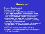 brown rot4