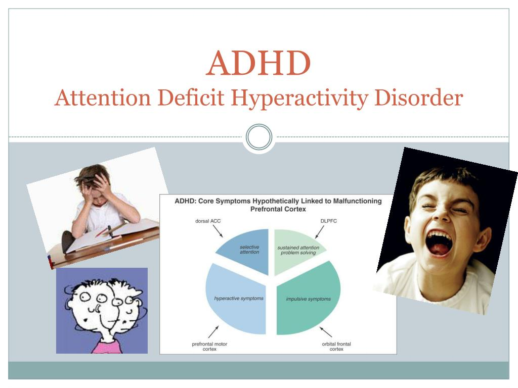 adhd attention deficit hyperactivity disorder l.
