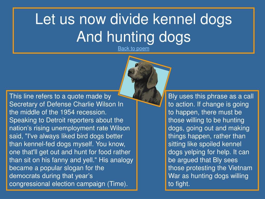 Let us now divide kennel dogs