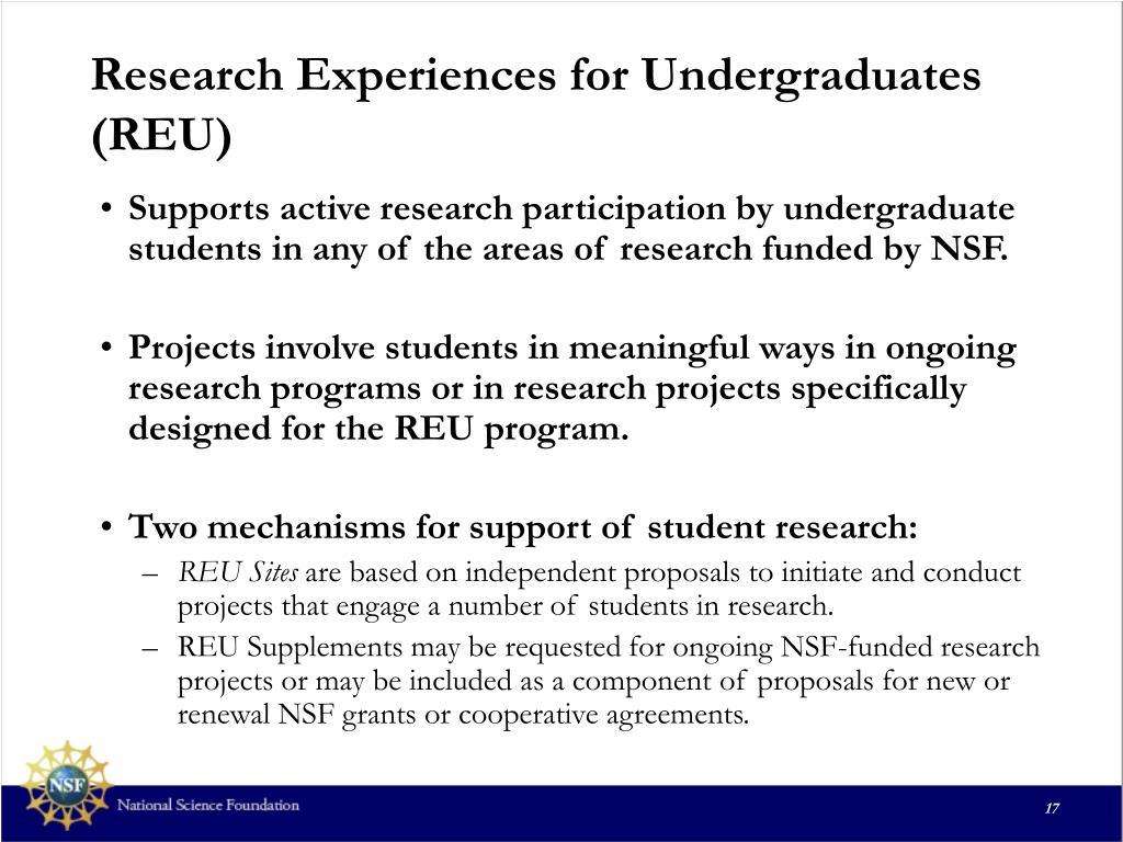Research Experiences for Undergraduates (REU)