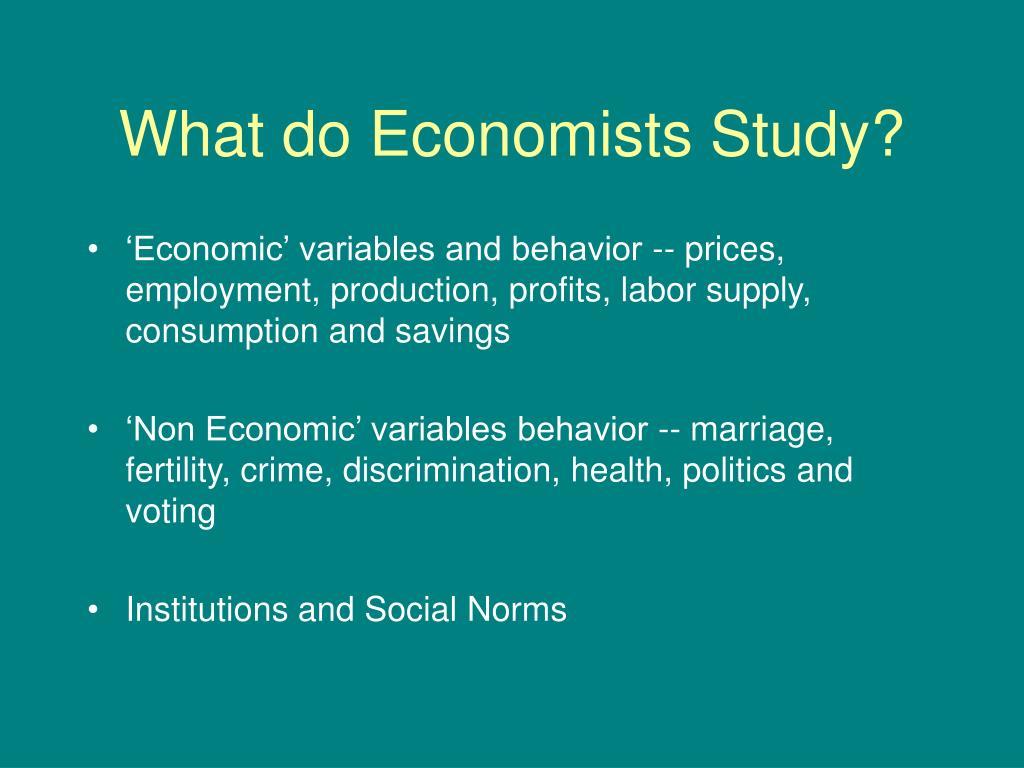 What do Economists Study?