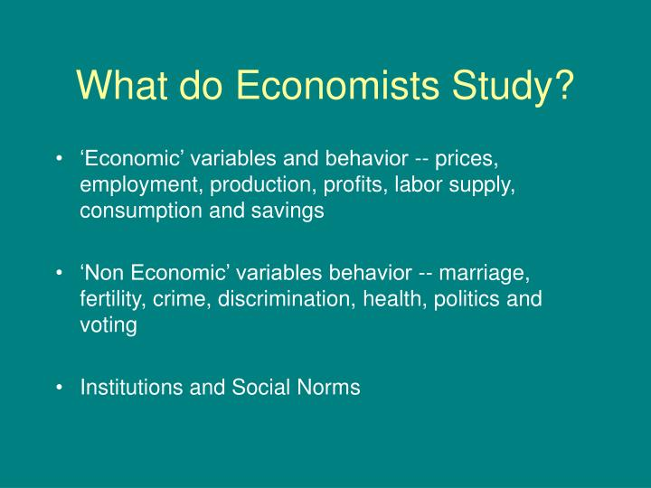 What do economists study