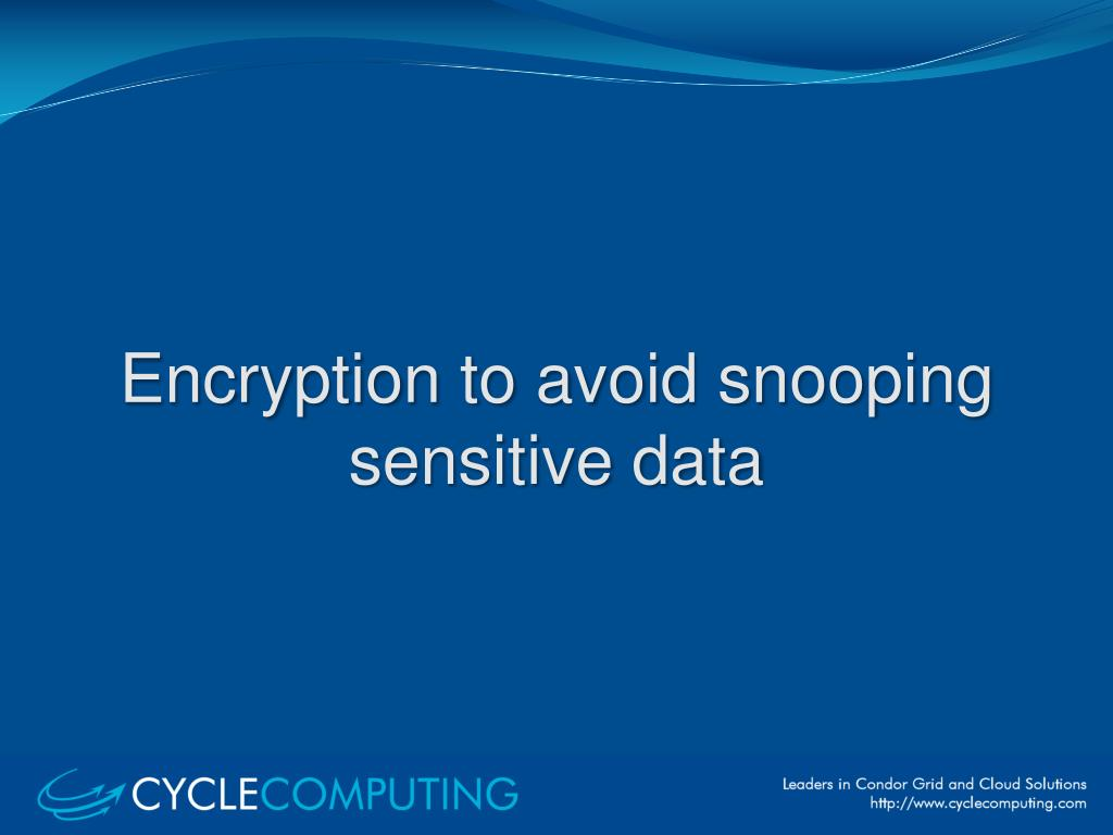 Encryption to avoid snooping sensitive data