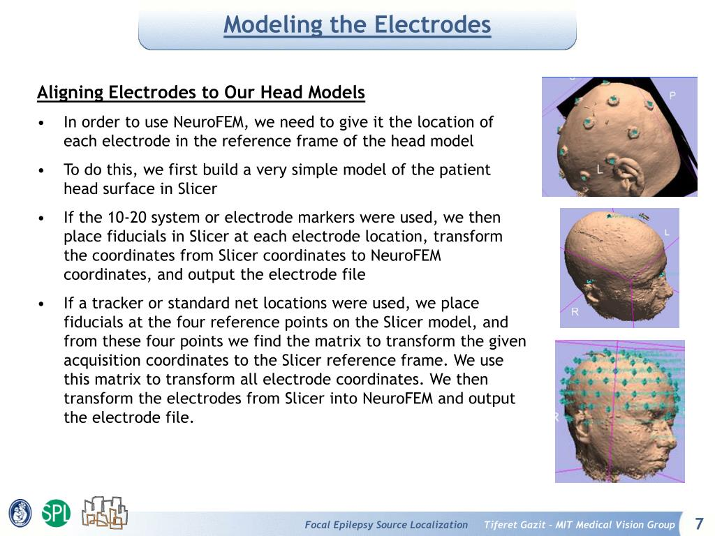 Modeling the Electrodes