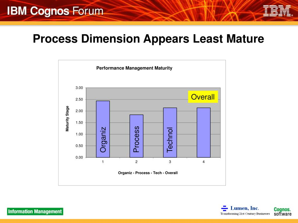 Process Dimension Appears Least Mature