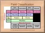 field classification