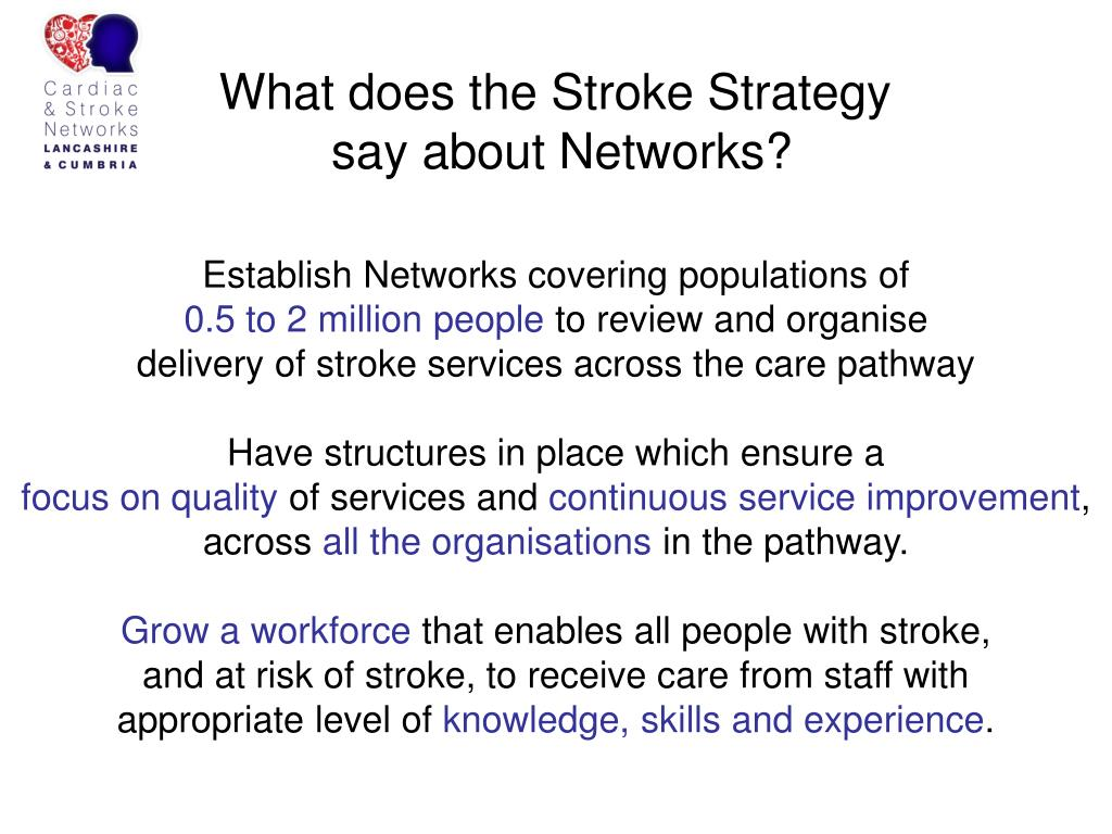 What does the Stroke Strategy