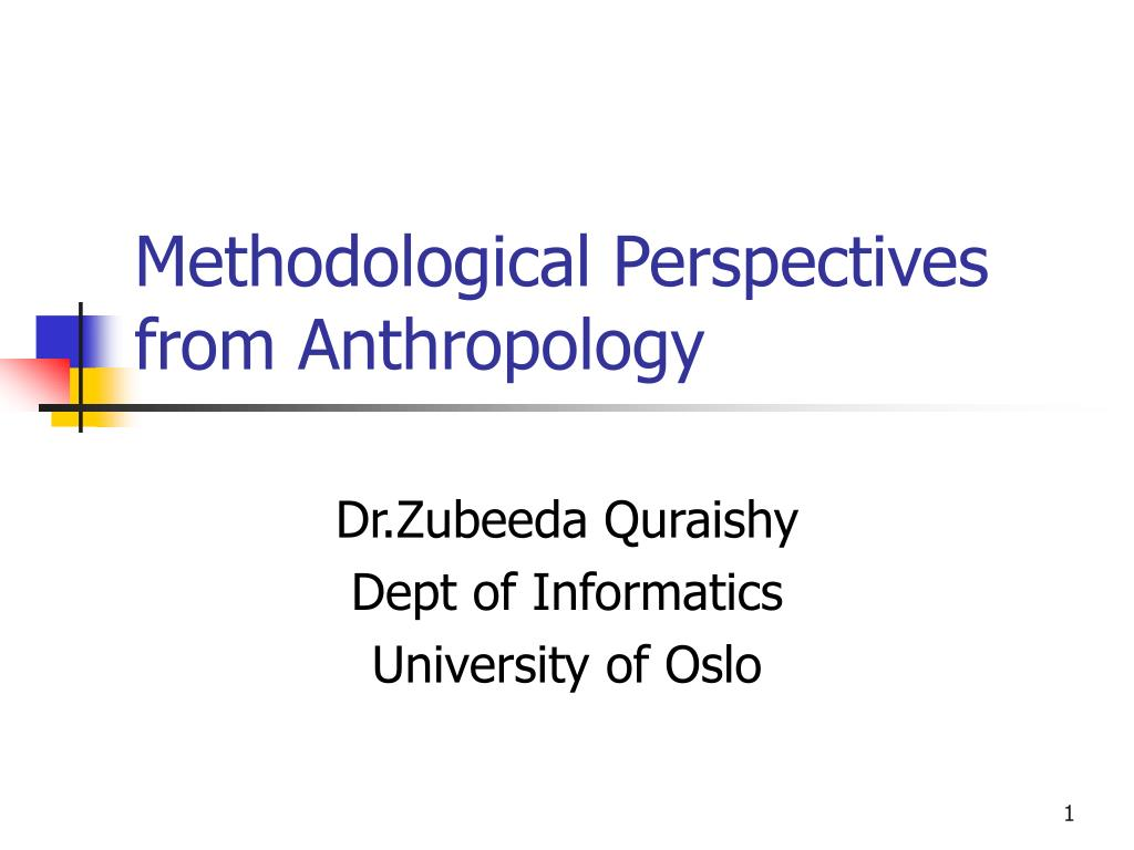 methodological perspectives from anthropology l.