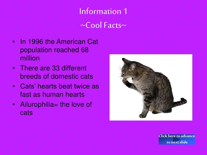 Information 1 cool facts