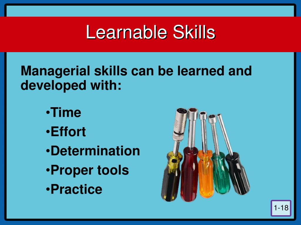 Learnable Skills