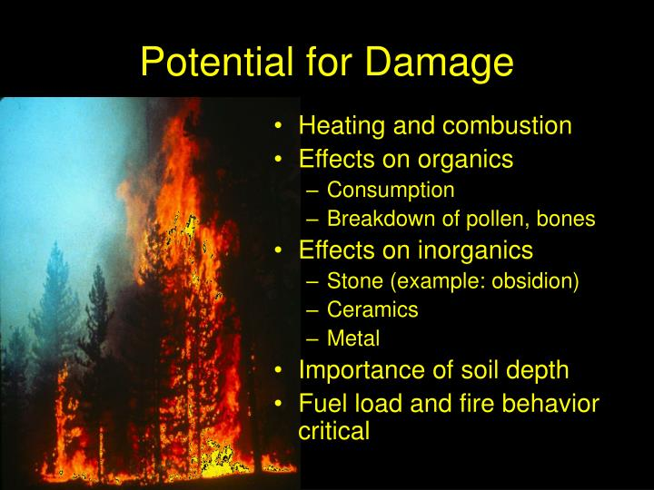 fire behavior and combustion Fire behavior- quiz 1 fire behavior quiz 4 the ending stage of a fire vapor that will ignite upon contact with a flame but will not sustain combustion.