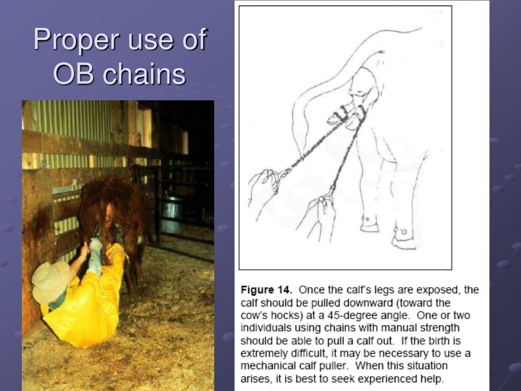 Proper use of OB chains