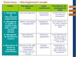 overview management mode