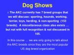 dog shows32