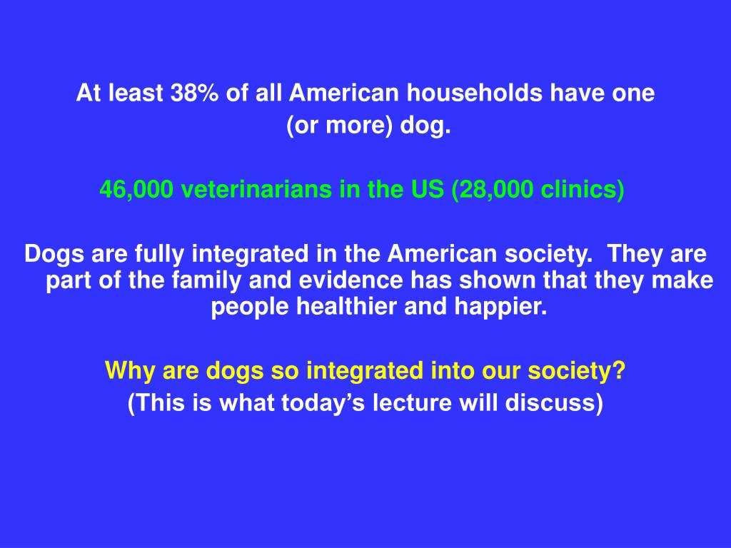 At least 38% of all American households have one