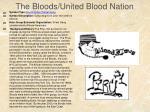 the bloods united blood nation