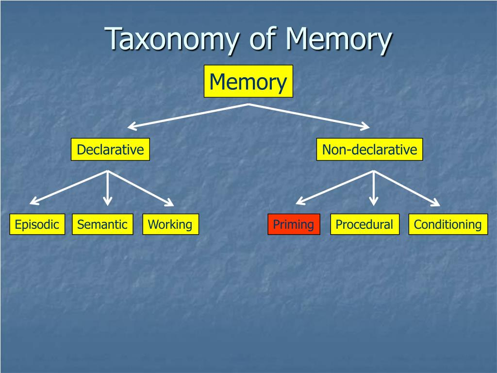Taxonomy of Memory