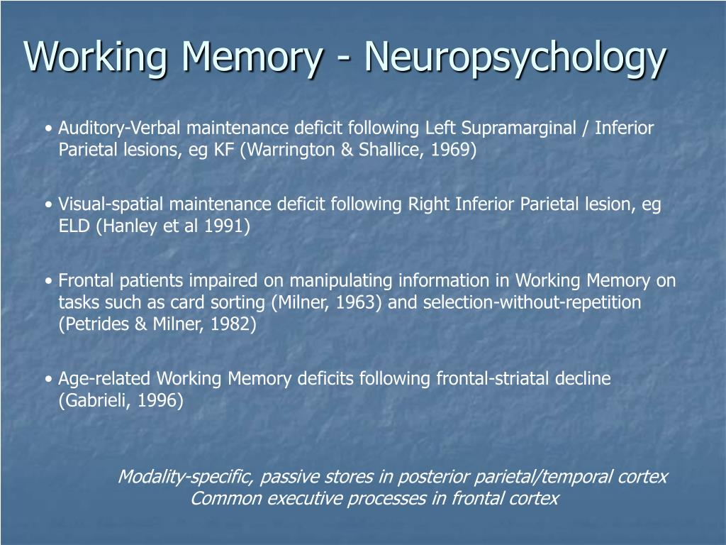 Working Memory - Neuropsychology