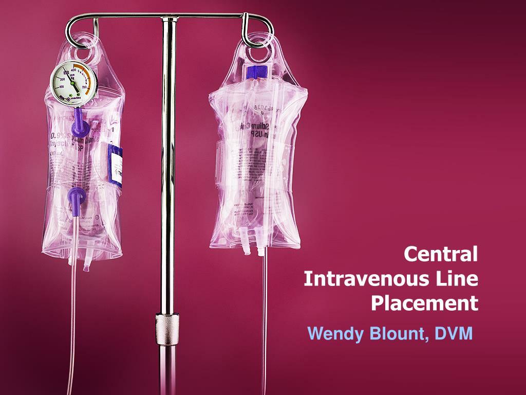 central intravenous line placement l.