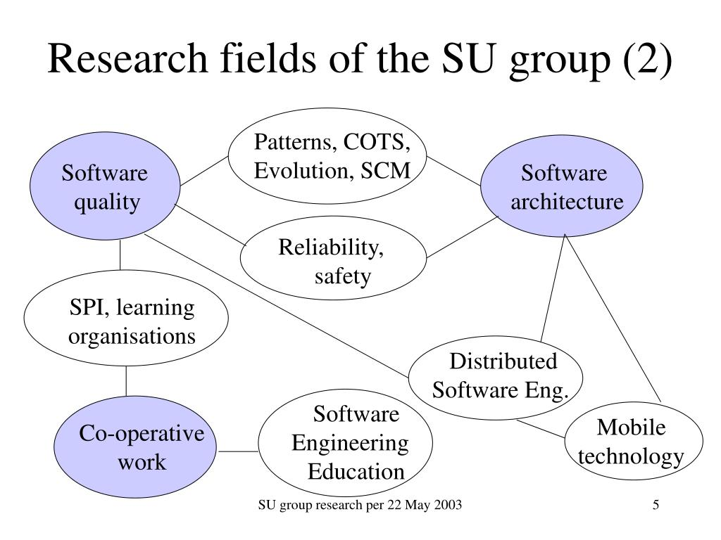 Research fields of the SU group (2)