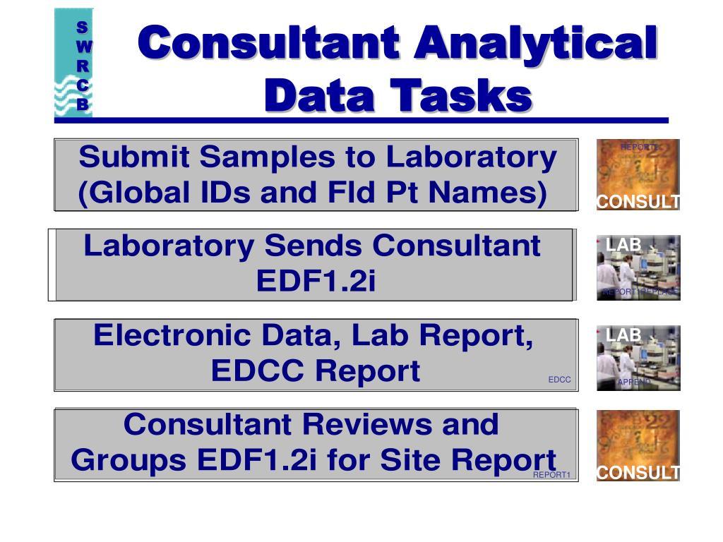 Consultant Analytical  Data Tasks