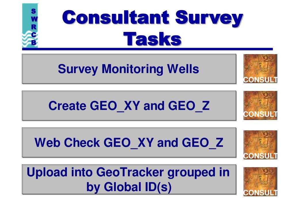 Consultant Survey Tasks
