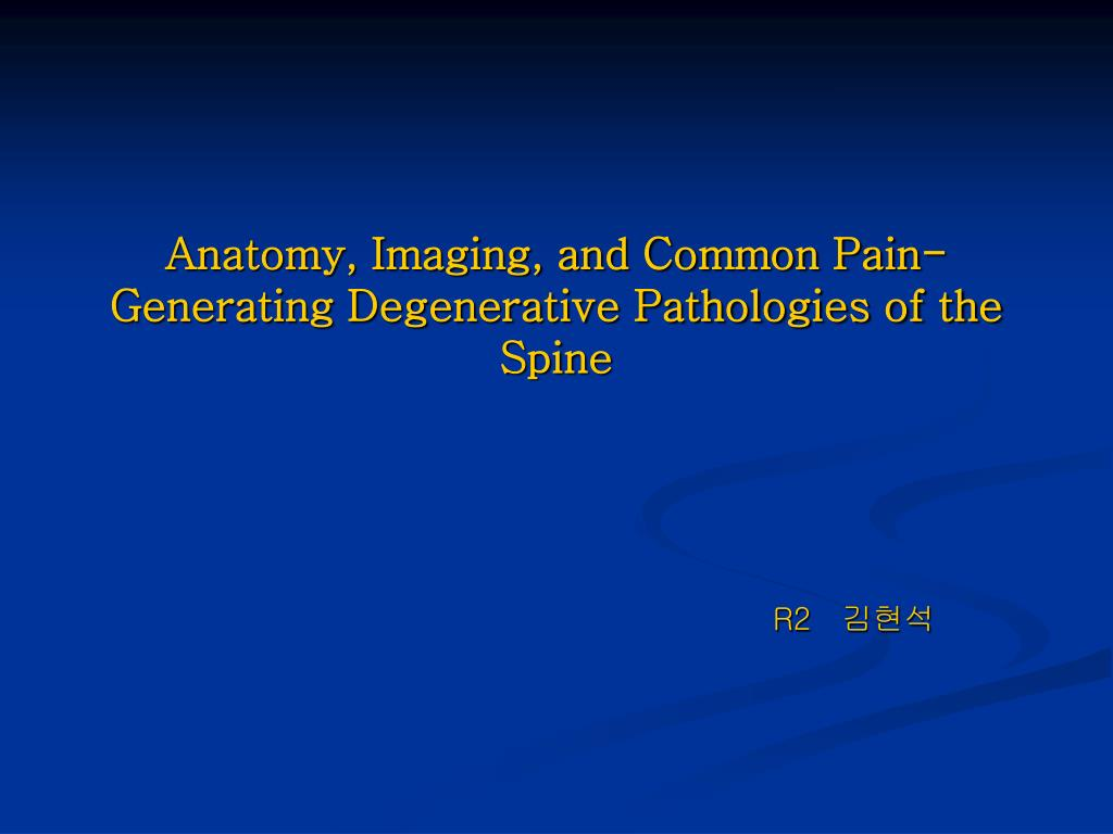 anatomy imaging and common pain generating degenerative pathologies of the spine l.