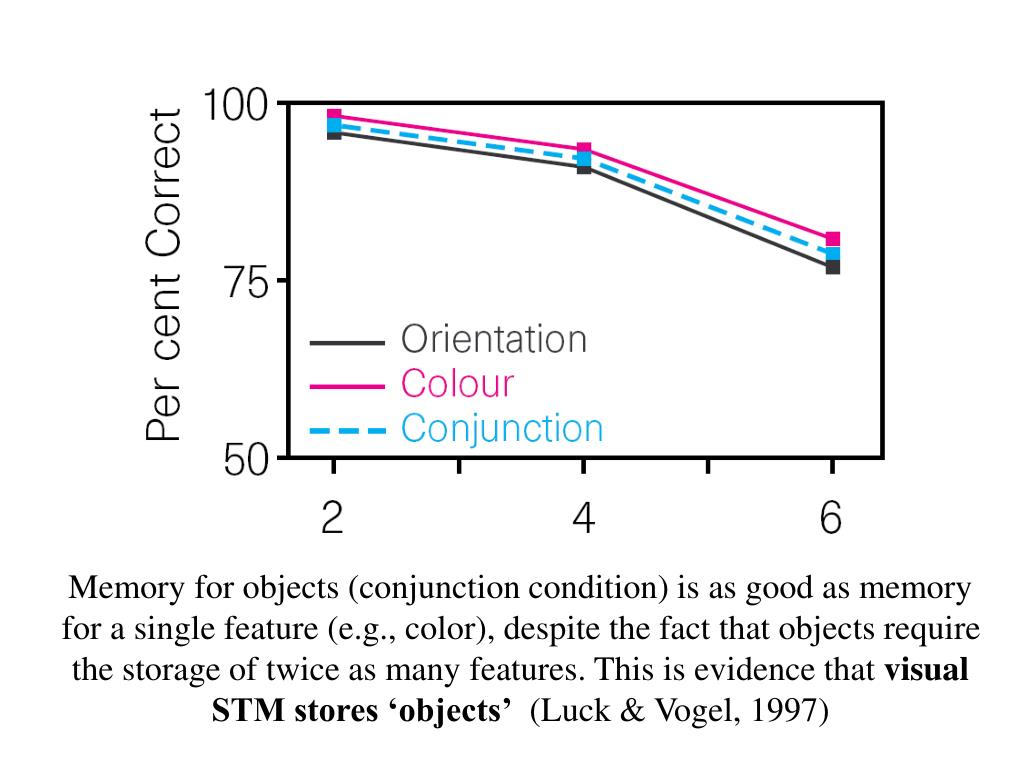 Memory for objects (conjunction condition) is as good as memory for a single feature (e.g., color), despite the fact that objects require the storage of twice as many features. This is evidence that