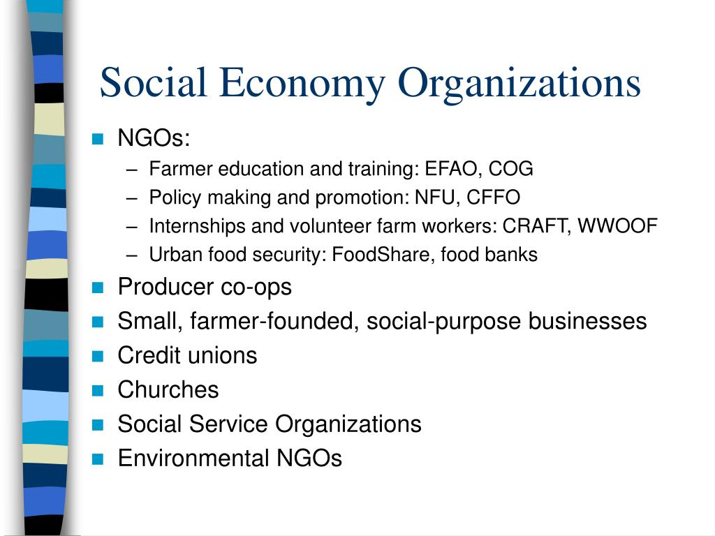 Social Economy Organizations