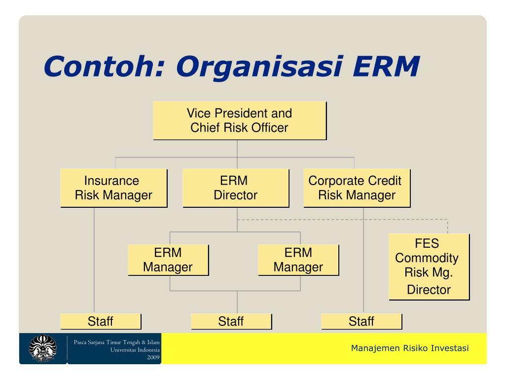 Contoh: Organisasi ERM