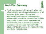 work plan summary21