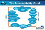 the accountability coral