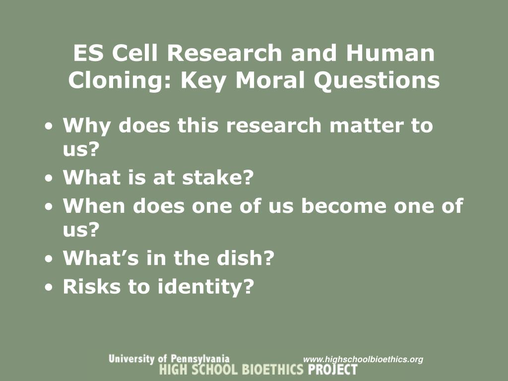 ES Cell Research and Human Cloning: Key Moral Questions