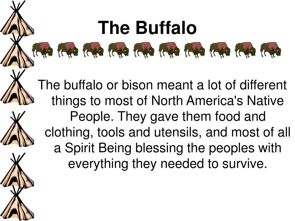 The Buffalo