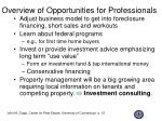 overview of opportunities for professionals