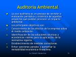 auditor a ambiental